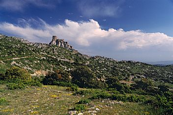 The Cathar fortress Château Quéribus