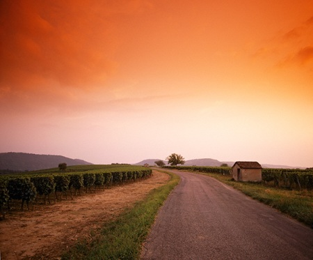 Sunset near Cahors © Mick Rock/Cephas