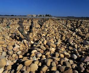 Châteauneuf du Pape pebbles