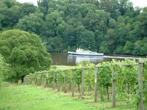 Sharpham in Devon
