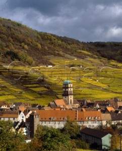 Alsace wine region